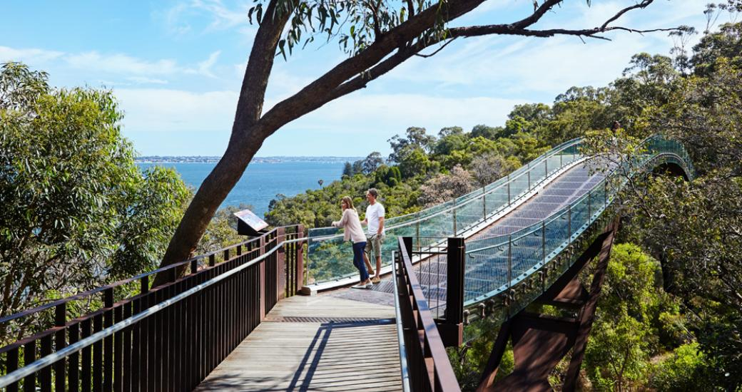 Tree Top Walk, Kings Park, Perth